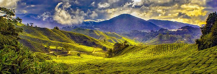 красивое фото пейзажа msmstudy