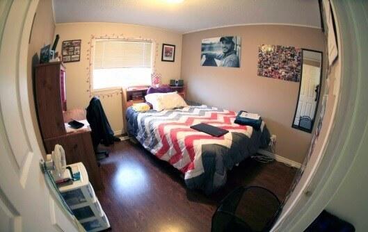 комната в общежитии msmstudy