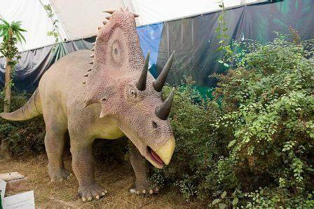 gallery-dinozavr-v-dinoparke