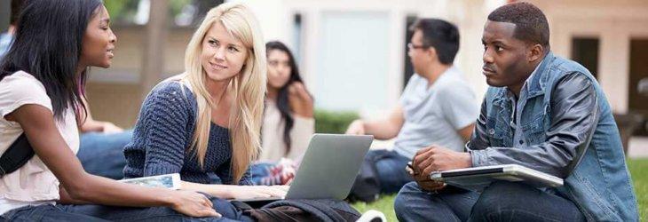 студенты занимаются на траве с ноутбуком msmstudy