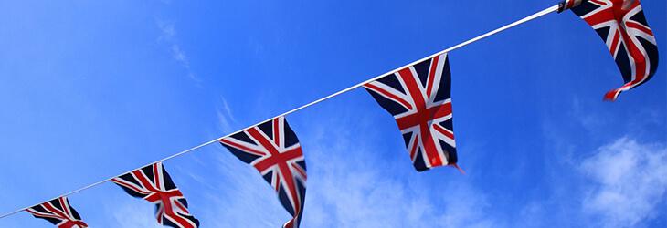 флаги msmstudy