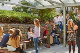 студенты отдыхают в парке msmstudy
