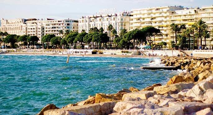 пляж msmstudy