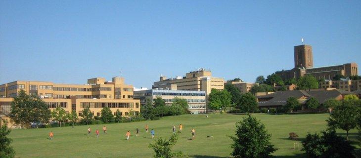 здание университета msmstudy