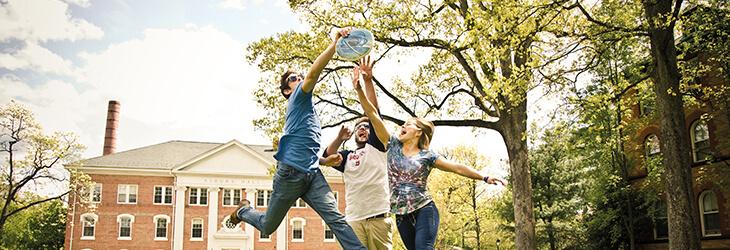 студенты резвяться на траве msmstudy