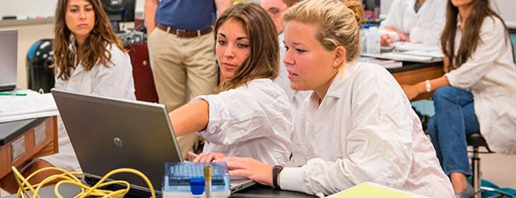 Студенты университета тампа работают за компьютером msmstudy