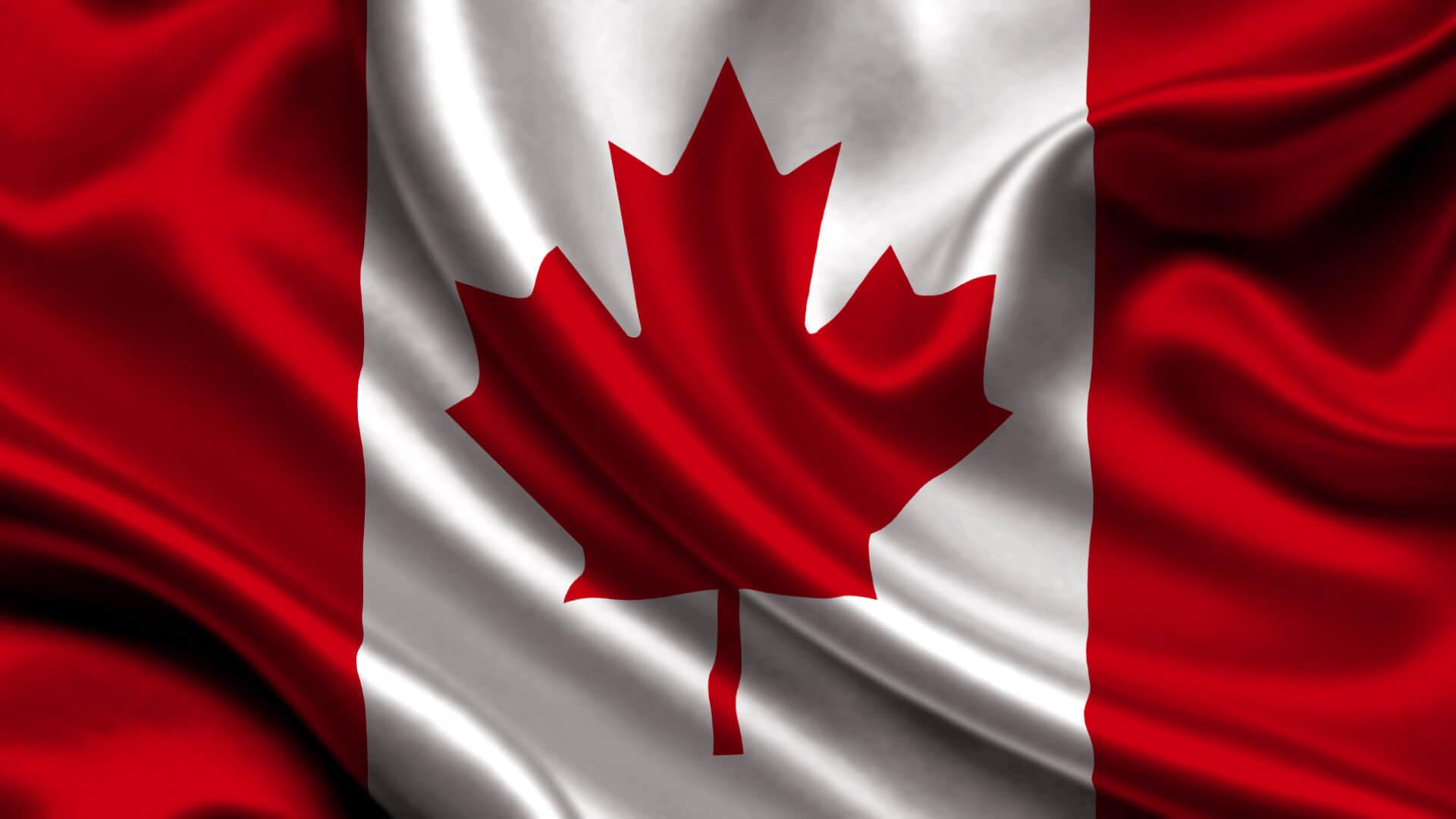 флаг канады msmstudy