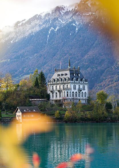 Швейцария msmstudy