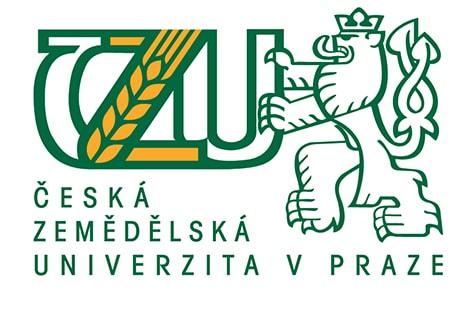 логотип ЧЗУ msmstudy