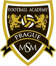 Футбольная академия лого