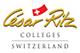 логотип cesar rits msmstudy