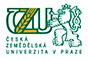 логотип czu msmstudy