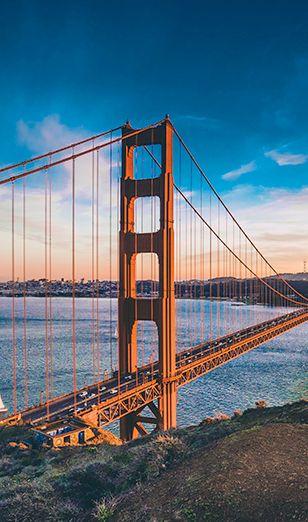 мост золотые ворота msmstudy