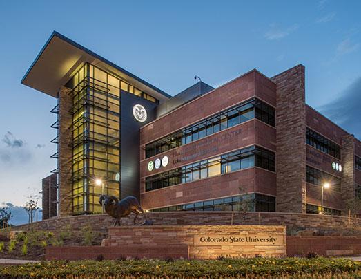Colorado State University msmstudy