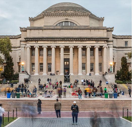 Высшее образование в Нью-Йорке msmstudy