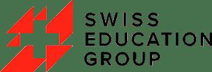 логотип SEG msmstudy