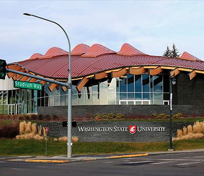 Washington State University msmstudy