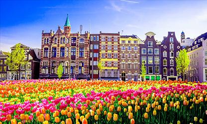 Высшее образование в Нидерландах